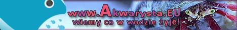 www.Akwarysta.EU