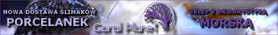 Coral Planet